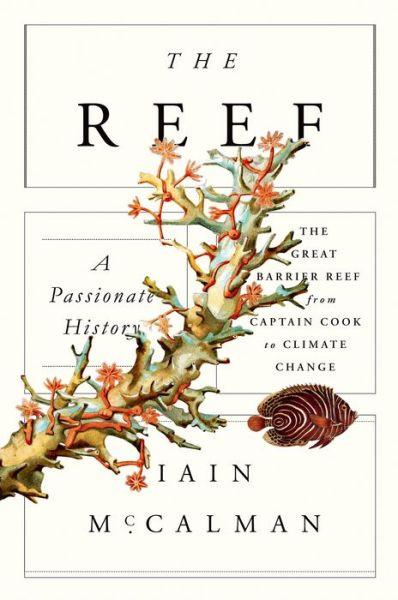 reef.jpg (398×600)