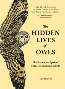 hidden lives of owls