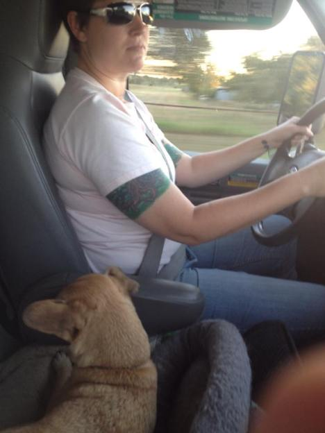 "this is two years ago in a U-Haul. but we probably look something like this. Husband says: ""Truck-driving Mama and Dog as her copilot."""